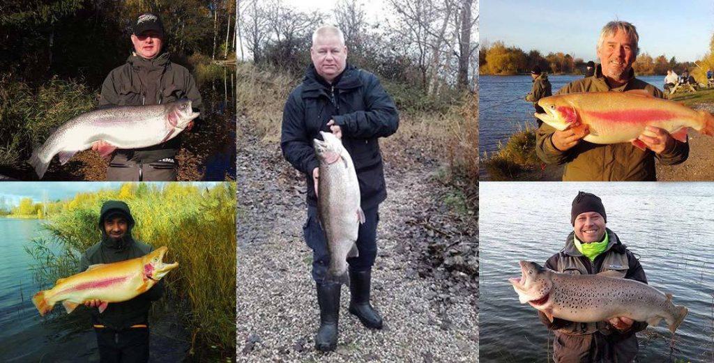 125 Forellen über 5 kg in 30 Tagen